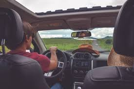 Driving Trip Planner Planning A Road Trip Tips And Advice