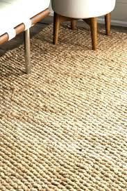 chenile jute rug medium size of professional pottery barn chenille jute