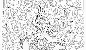 Flower Mandala Coloring Pages Printable Free Printable Coloring