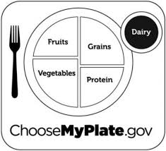 Small Picture MyPlate Coloring Pages to Use HubPages