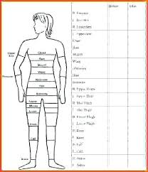 Weight Loss Spreadsheet Template Best Of Body Measurement