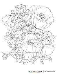 461e4adf175033df3017066f5381bf1a printable flower coloring pages flower coloring pages for adults coloring techniques using colored pencils,techniques  on coloring pencil techniques