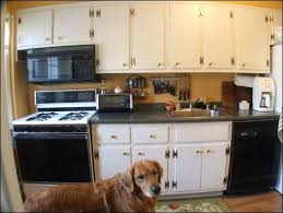 best kitchen cabinets online. Rta Kitchen Cabinets Reviews Large Size Of White Best Review . Online L