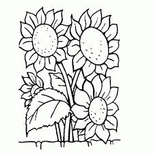 Kleurplaat Bloemen In Een Vaas Meubilaireu