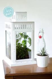 fabulous ikea hack diy lantern terrarium on thou swell with ikea greenhouse.
