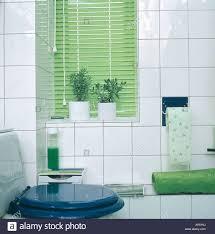 Grün Lattenrost Blind Und Grünen Handtuch Weiß 70er Jahre Badezimmer