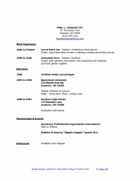 Template Free Resume Templates Teen Job Examples For College