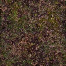 grass texture game. Game Art 40watt Grass Texture