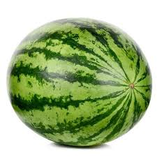 pics of water melon. Unique Melon And Pics Of Water Melon R