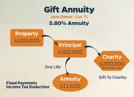 ilration a charitable gift annuity case study