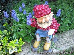garden gnome photo picture definition garden gnome word and phrase image