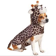 Petco Dog Collar Size Chart Petco Giraffe Dog Costume L Nwt