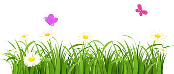 grass transparent background. Grass Clipart Transparent Background #9 Grass