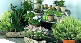 patio herb garden apartment balcony herb garden 7 apartment herb garden tips apartment gardening balcony garden patio herb garden