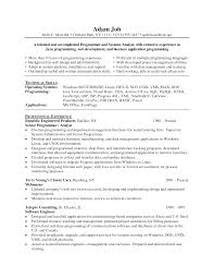 java jee developer resume cipanewsletter web designer resume format template web developer sle cover letter