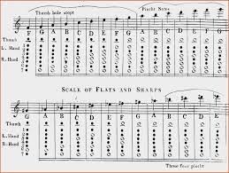 Flute Chart Pdf Flute Finger Chart Cypru Hamsaa Therook Net