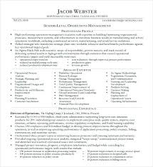 Example Executive Resume Magnificent Sample Executive Resume Manager Resumes Examples Account Manager