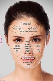 Chinese Face Mapping Skin Analysis Chart Video Instructions