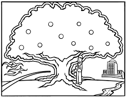Small Picture Toddlers Tree Coloring Pages Adults Branch Gekimoe 72588