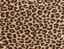 Leopard Print Wallpaper Bedroom Leopard Print Wallpaper