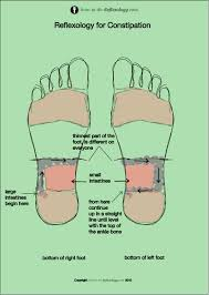Pressure Point Charts Free Foot Reflexology Pressure Points Chart Free Reflexology