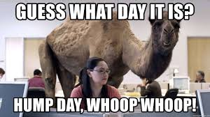 33 Happy Hump Day Meme Wishes And Images Preet Kamal