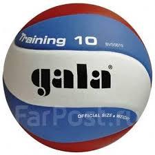 <b>Мяч волейбольный Gala Training</b> 10 BV5561S - Фарпост в ...