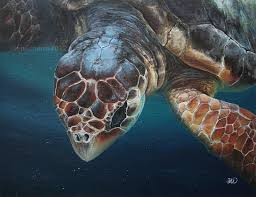 copyright 2016 jen richards member of the ocean artists society