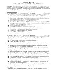 accounting resume summary