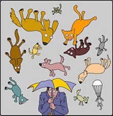 raining cats and dogs clipart. Simple Dogs Why Is His Umbrella All Bumped But Nary Even A Kitten On It To Raining Cats And Dogs Clipart S