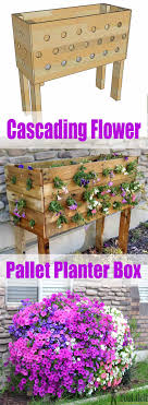 cascading flower wood pallet planter box