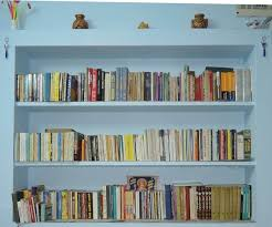 Image result for overloaded bookshelf pictures