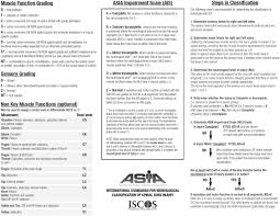 Spine Levels Chart Punctual Asia Chart Spinal Cord Injury Spinal Cord Injury