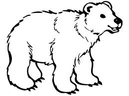 Small Picture Best Photos Of Polar Bear Footprint Printable Footprints Clip Art
