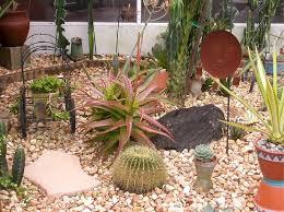 Small Picture Succulent Garden Ideas Garden Design Ideas