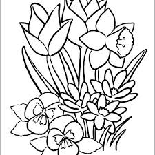 Spring Coloring Pages Colouring Page Of Spring Images Spring