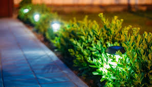 Small Picture Cairns Premium Gardening Service