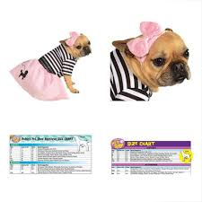 Rubies Dog Costume Size Chart Rubies Costumes 50s Girl Pet Costume Small 883028783250 Ebay