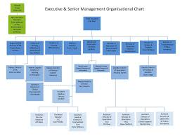 Executive Hierarchy Chart Executive Senior Management Organisational Chart Ppt