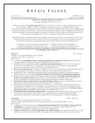 Ceo Resumes Top Resume Samples Executive Format Resumes By New York Resume Writer 22