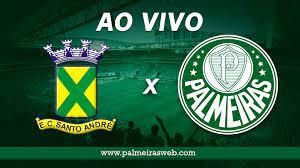 Santo André x Palmeiras AO VIVO: Campeonato Paulista 2021