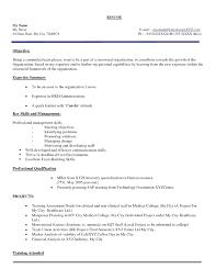 Imposing Marketing Resume Format Templates Fresher Doc Sample Best