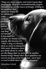 Inspirational Quote On Dogs From Carroll Dogs Are Angels Instagram