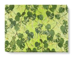 white lime tree canvas wall art