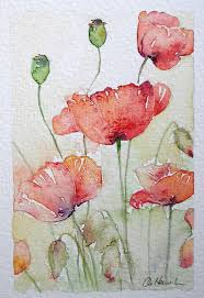 sunlit poppies an original small watercolour painting by amanda hawkins size of painted area 9