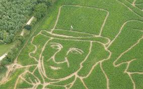 york maze. guest of honour to officially launch the maze was british actress julie dawn cole who played veruca salt alongside gene wilder in 1971 film \u0027willy wonka york e