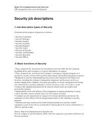 Security Manager Sample Job Description Network Analyst Skills And