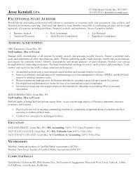Front Desk Night Auditor Resume Sample Senior It Internal Format