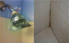 clogged showerhead and how to clean the black mold mark grout between shower tiles