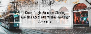 cross origin resource sharing access